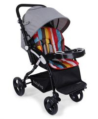 Joy Ride (Grey & Rainbow)