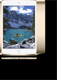 Apple iPad mini 4 128 GB with Retina Dispaly Silver