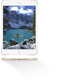 Apple iPad mini 4 Wifi 64 GB with retina display Gold